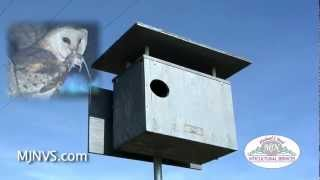 Barn Owl Box Used In Napa Valley Vineyard To Aid In Pest Control