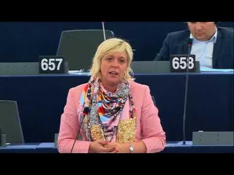 Hilde Vautmans 12 Sep 2017 plenary speech on North Korea