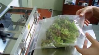 진공포장기 ECO시리즈-음식포장/질소충진[가성팩]