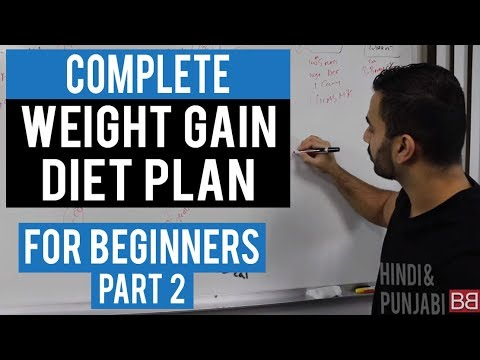 Full Day Diet Plan To Gain Weight For Beginners Part 2 Hindi Punjabi Youtube
