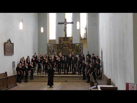 Indodana (Michael Barrett - Ralf Schmitt) - Jeugdkoor Waelrant (Borgerhout-Belgium)