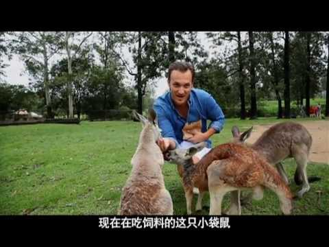 Brisbane - International Channel Shanghai's Getaway program