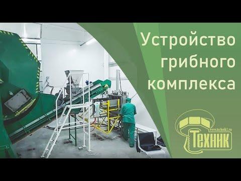Устройство грибного комплекса. Необходимые производственные участки, оборудование, сырье.