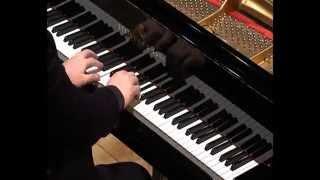 Beethoven Fantasia (Fantasy) op.77 in g minor - Alexander Panfilov Piano