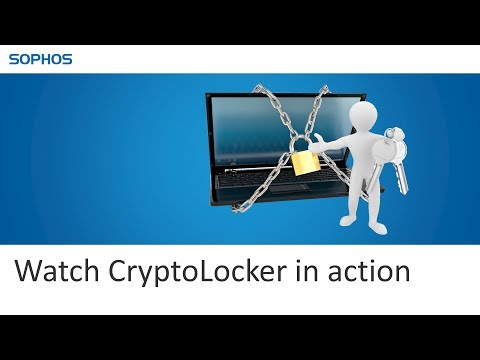 Watch CryptoLocker in action