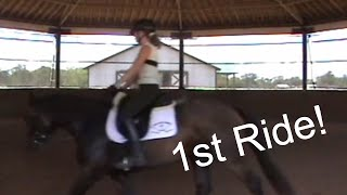 Young Filly - First Ride