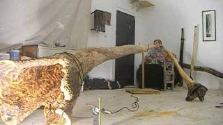 Biggest Solid Didgeridoo on the Planet - The GAIA GUM