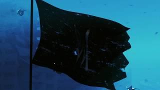 Alan Walker: Aviation Tour (Trailer #1)