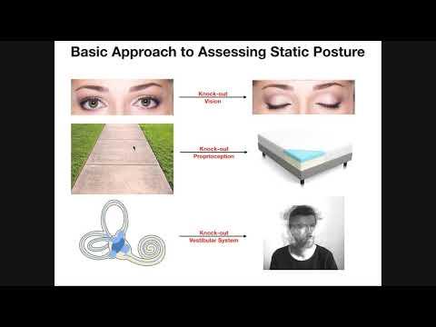 Differentiating Visual, Proprioceptive, & Vestibular Deficits for Imbalance