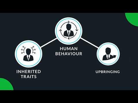 Psychometric Tests | Employee Assessment | Building Effective Teams | Mettl