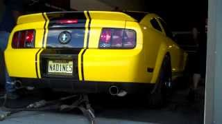 2005 Mustang NJ 4.6 Dyno Runs at Big Daddy Performance