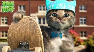 Little Kitten & Friends - Learn with the cutest cat! (Fox and Sheep GmbH) - Best App For Kids