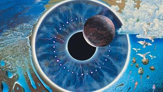Pink Floyd   PULSE Restored & Re Edited