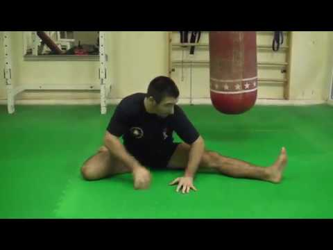 Ashot Zarinyan - Special Training Kyokushinkai