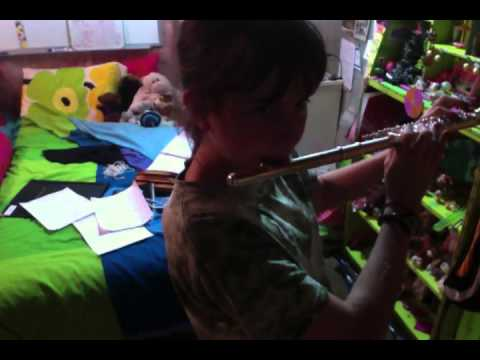 O Canada Flute Cover