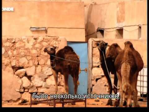 Tunis troglodity2