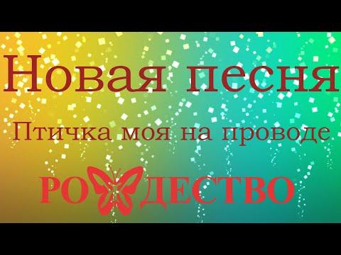 Группа Рождество   Птичка моя на проводе   Новая песня