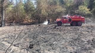 Feu de forêt à La Roche-Chalais : les pompiers sont toujours sur place