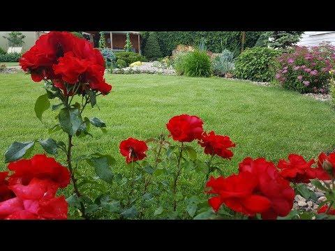 Красивый сад своими руками. Ландшафтный дизайн.