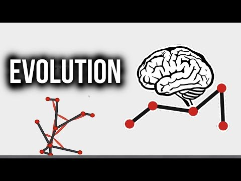 GROWING A HUMAN! - Evolution Simulator [Free]