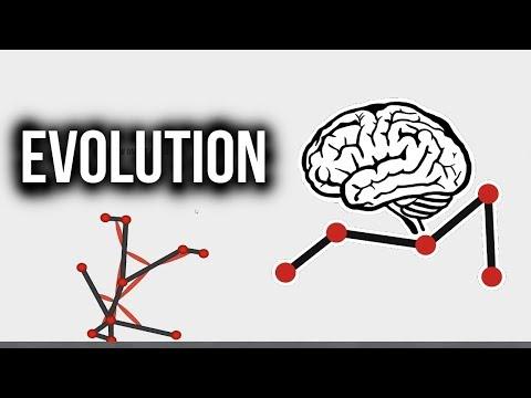 GROWING A HUMAN! - Evolution Simulator [Free]