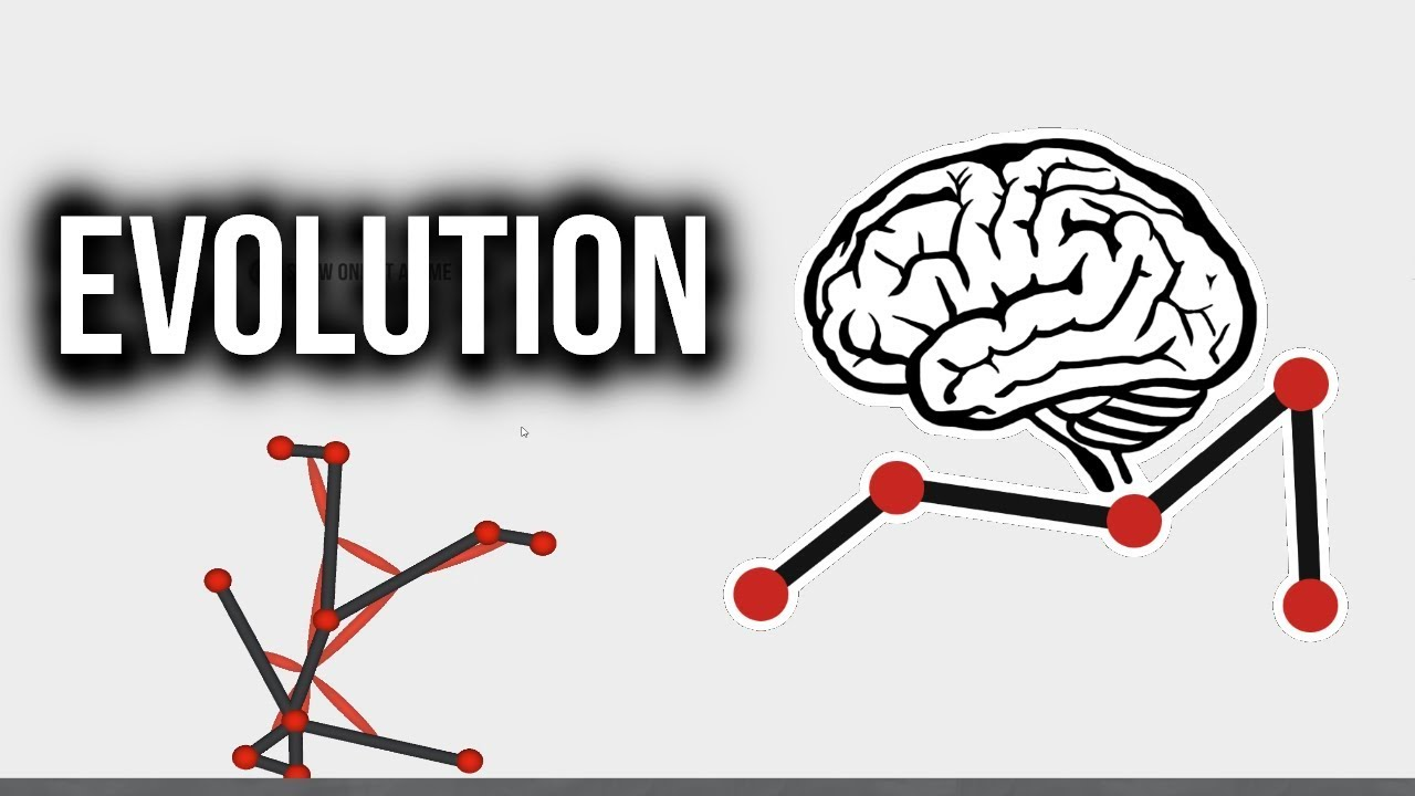 how to make an evolution simulator with c