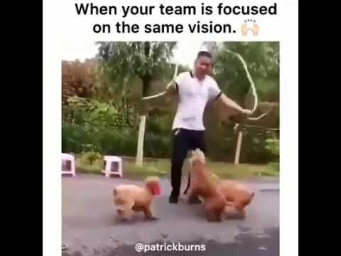 Teamwork, Works
