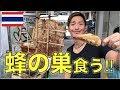 【タイ・バンコク】街中で売ってた蜂の巣食べてみた!