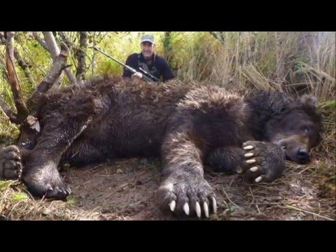 The  Biggest Grizzly Bear Ever Killed In Alaska