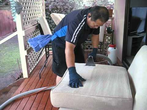 nz cleaning services ltd , upholstery steam cleaned