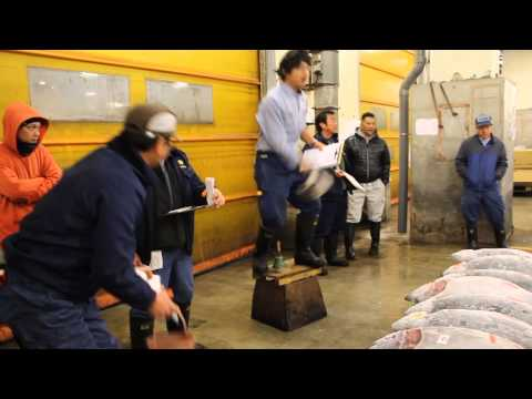 Tsukiji Fish Market - Before the Auction (Part 2)