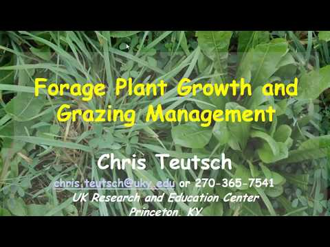 Forage Plant Growth and Grazing Management-Chris Teutsch