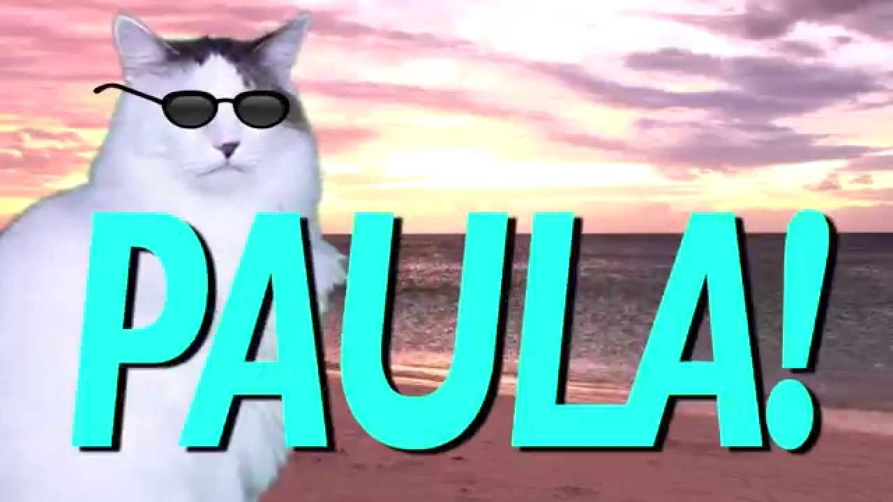HAPPY BIRTHDAY PAULA! EPIC CAT Happy Birthday Song YouTube