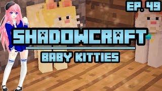 Baby Kitties   ShadowCraft   Ep. 49