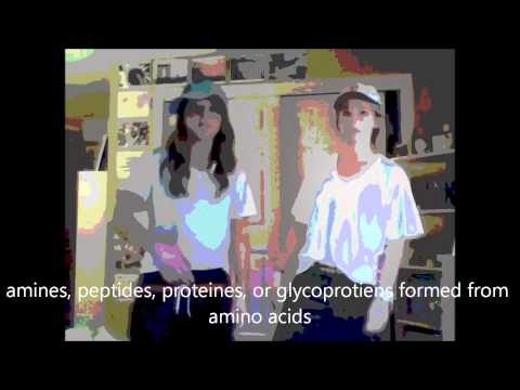 The Endocrine System - Megan and Jill - Black and Yellow by Wiz Khalifa