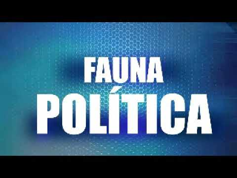 Fauna Política entrevista Nicolás García Granados Omv Radio 15 Septiembre 2017