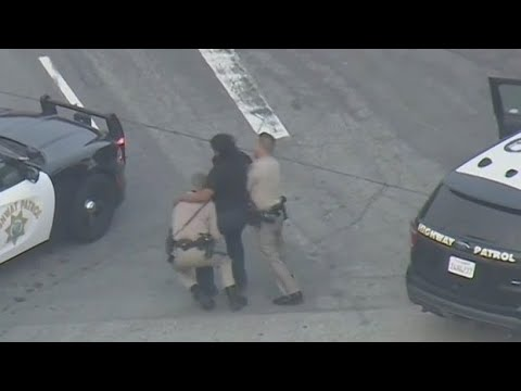 Fight breaks out after end of police chase - GREAT COMMENTARY!