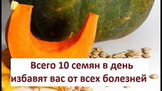 Тыква, уникальный овощ! Полезные свойства тыквы для детей и взрослых!