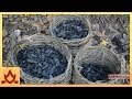 Primitive technology charcoal mp3