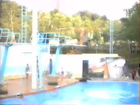 Emil at Magic Mountain Diving Show