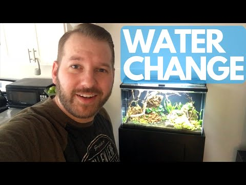 Water Change Using RO/DI Water And Seachem Equilibrium