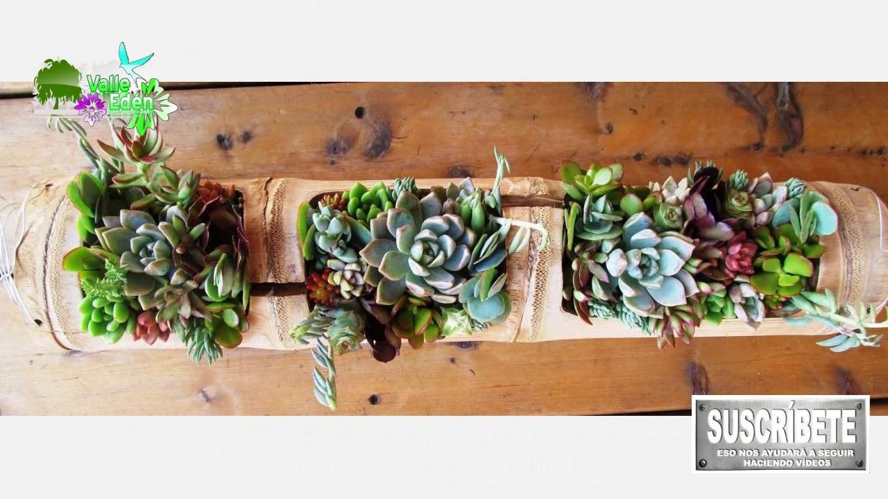 Mini jardines jardines en miniatura youtube for Jardines en miniatura