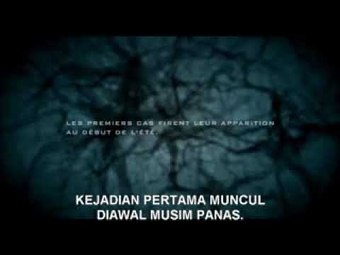 Film Horor Zombie Terbaru 2018 Sub Indo Youtube