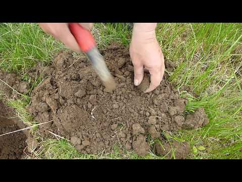 Metal Detecting South Gloucestershire
