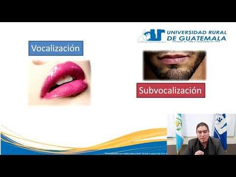 Teoría y Análisis de Textos. clase 8из YouTube · Длительность: 15 мин42 с