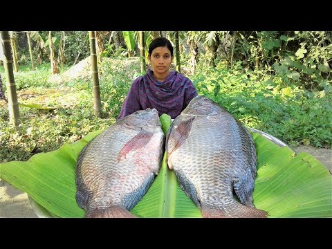 Telapia Fish Masala Curry | Bangali Style Fish Curry Recipe Cooking By Street Village Food