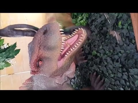 dinosaurs are Angry about Poop!! Go  Dino dinosaurs ,  your Water Park &  GO jurassic park