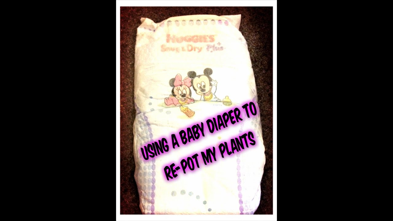 Using A Baby Diaper To Re Pot My Plants