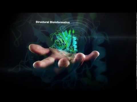 International Conference on Bioinformatics and Computational Biology, BIOCOMP 2012
