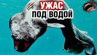 РАЗРУШИТЕЛИ МИФОВ - Морские монстры. Документальные фильмы, детективы HD